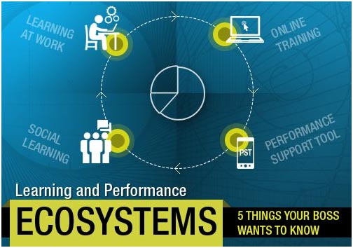 Learning And Performance Ecosystems: 5 Things Your Boss Wants To Know